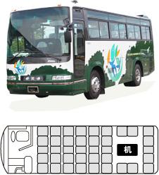中型バス 33人乗りサロン